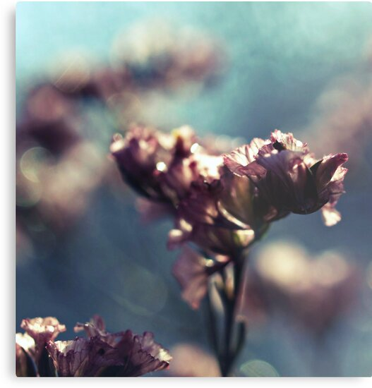 the whispers of spring by Angel Warda