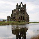 Whitby Abbey - North Yorkshire by monkeyferret