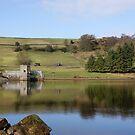 codbeck reservoir - spring reflections by monkeyferret