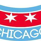 Chicago Hot Dog by Shayli Kipnis