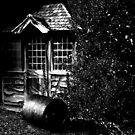 Shed in the Shadows by Country  Pursuits
