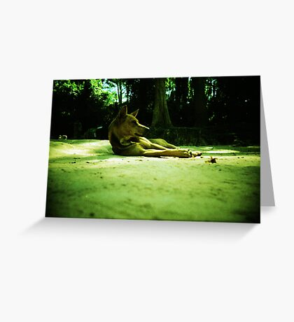these are the days, siem reap, cambodia Greeting Card