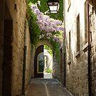 Beautiful France by Susan Moss