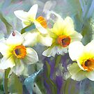 Daffodils on misty blue by Tummy Rubb Studio