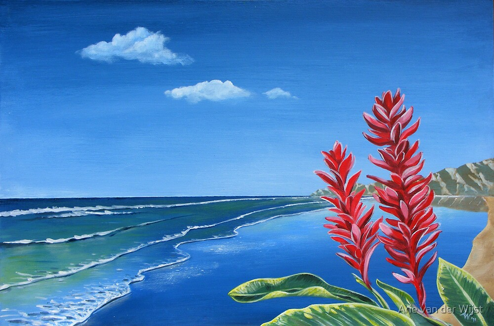 Paradise by Arie van der Wijst