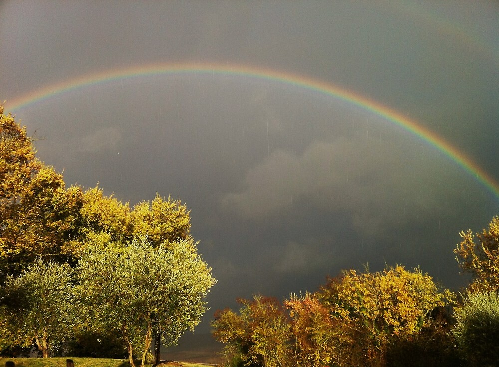 Under the Rainbow by marens