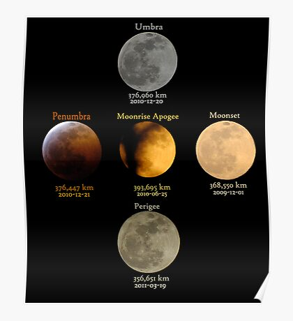 A Moon Full of Flavors and Sizes Poster