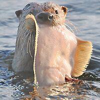 Wanna fish? by Carl Olsen