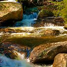 Running Water by Monica M. Scanlan