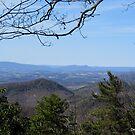 Blue Ridge Parkway Vista by Debbie Robbins