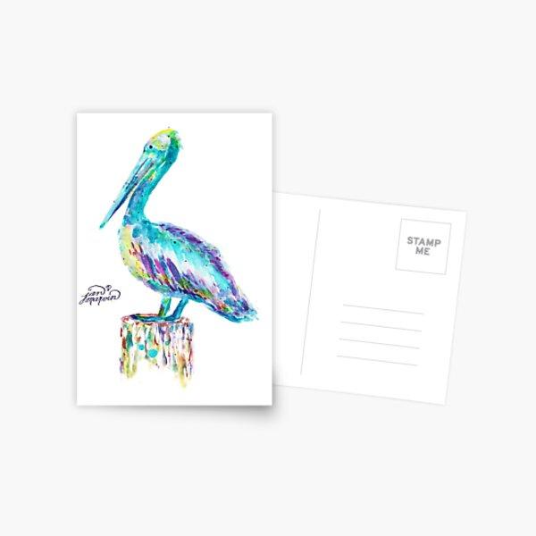 Pelican watercolor Postcard