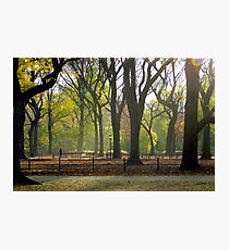 Autumn in Central Park, NYC Photographic Print