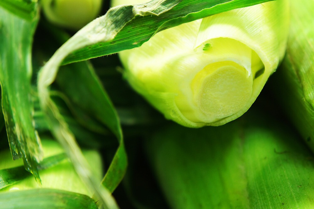 The Greenest Corn - Local Markets by BlueMotor