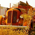 Old Fire Truck by Escott O. Norton