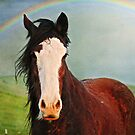 Under the Rainbow by Laura Palazzolo