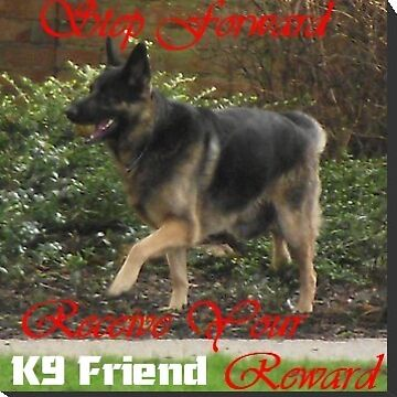 K9 Friend Banner by horace009