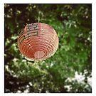 Lantern by yorgi