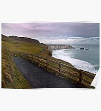 Carrick-a-Rede: The way back Poster