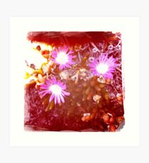 Hipsta beach flowers Art Print