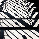 Shadowy Stairway by daphsam