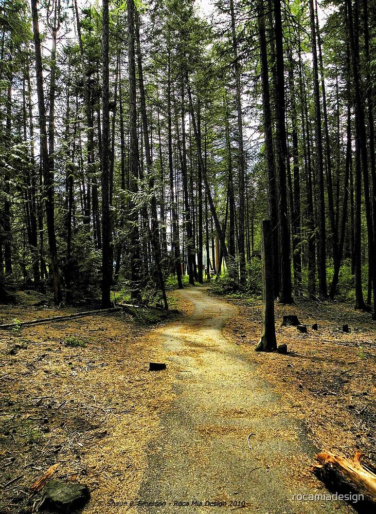 Kootenai Falls Trail by rocamiadesign