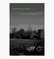 prediction of spring Photographic Print