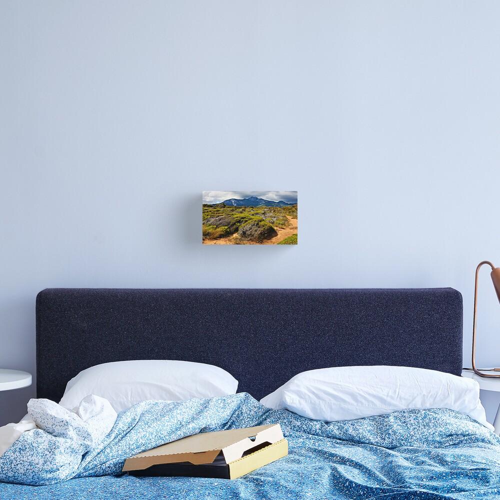 Mount Strzelecki - Flinders Island Canvas Print