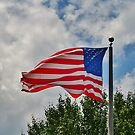 Grand Ole Flag by Scott Mitchell