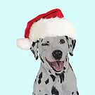 Christmas  Dalmation. by cathyscreations