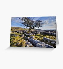 Above Langcliffe - The Yorkshire Dales Greeting Card
