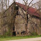 Rustic Beauty at Falls Mill by Charldia