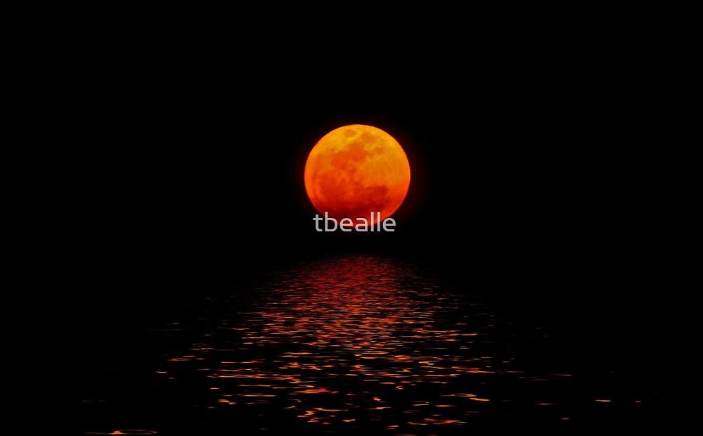 ~Super Moon~ by Terri~Lynn Bealle