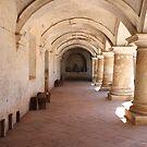 Pillars of Capuchinas by Don Rankin