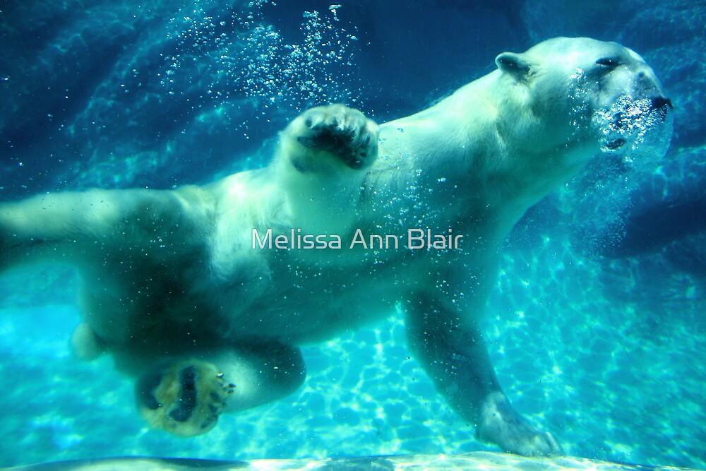 NC Polar Bear by Melissa Ann Blair