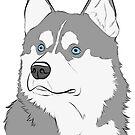 Gray and White Husky by rmcbuckeye