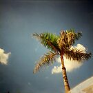 a promising forecast, phnom penh, cambodia by tiro