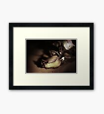 Kiss from a dying Rose Framed Print