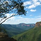 Grose Valley from Evans Lookout by Michael John