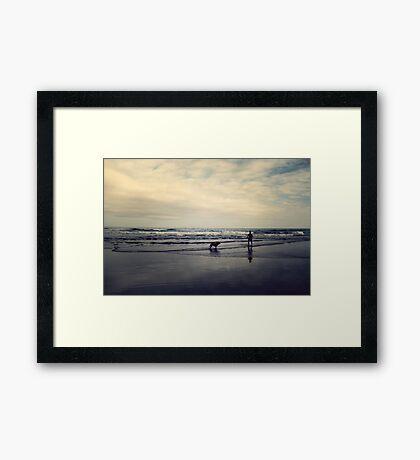 Doggie Beach Fun II Framed Print