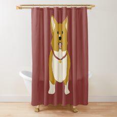Ein Shower Curtain