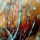 Fireside Snow Fall by MacroXscape