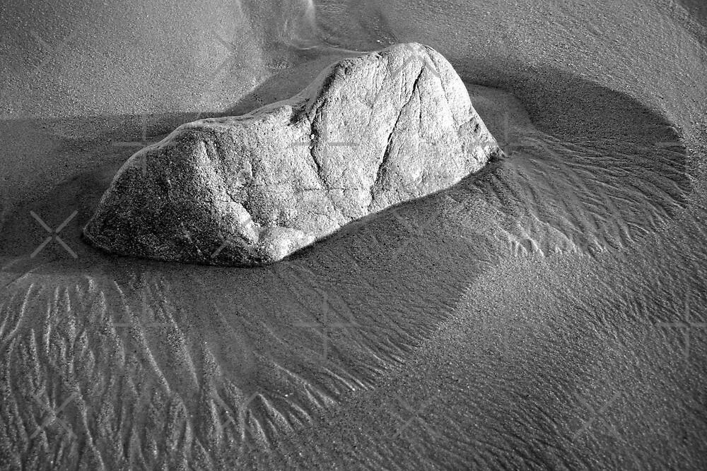 Malibu Beach Rock by William Fehr