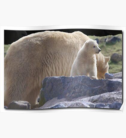 Polar Express #2 Poster