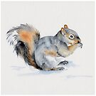 Squirrel's winter snacktime by Sue Pownall Artist