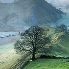 Parkhouse Hill by SteveMG