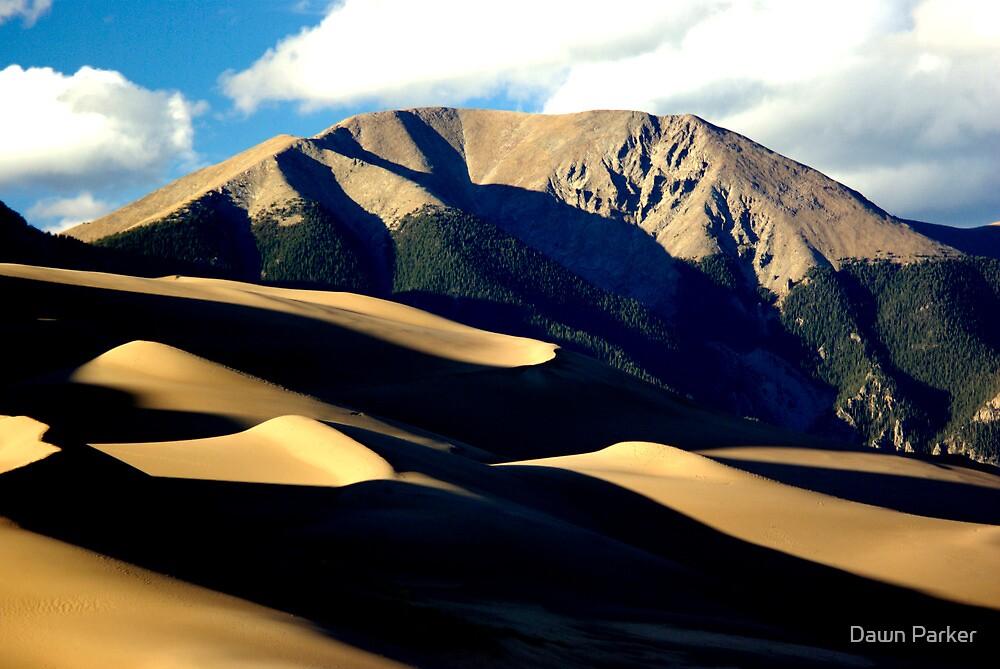 Dune Horizon by Dawn Parker