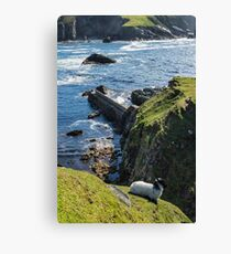 Port Canvas Print