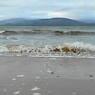At the ocean's edge... by Agnes McGuinness