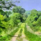 Green Lane by Linda Miller Gesualdo