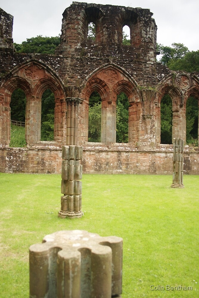 Pillars at Furness Abbey by Colin Bentham